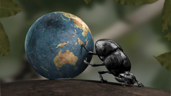 Earth Insect CGI Dung Beetle Crabs Wallpapers HD