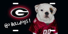 17039 awesome georgia bulldogs wallpapers 1600x900