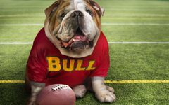 Georgia Bulldogs wallpapers HD for desktop backgrounds