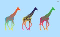 Giraffes Wallpapers