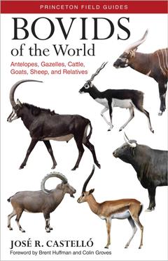 Bovids of the World Antelopes Gazelles Cattle Goats