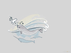 Narwhal Wallpapers Narwhal Wallpapers