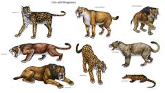 Mammal Like Dinosaurs Wallpapers Gallery