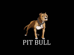Painted pit bull terrier wallpapers