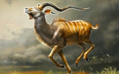 Male Greater Kudu Wallpapers