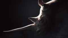 5090 Rhinoceros black backgrounds Wallpapers 1920x1080