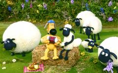 File Sheep Wallpapers
