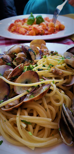 HD wallpaper pasta seafood clams italian italy rome