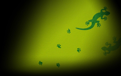 File Gecko Wallpapers
