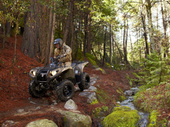 YZFX Bill Ballance Edition YAMAHA ATV pictures