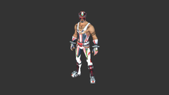 Masked Fury Outfit