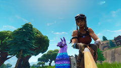 Took a selfie with a llama ended up getting the comet too FortNiteBR