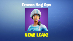 Frozen Nog Ops