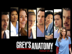 Grey s Anatomy Wallpapers by BookWizard