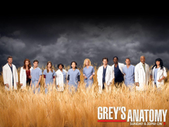 best ideas about Grey s Anatomy