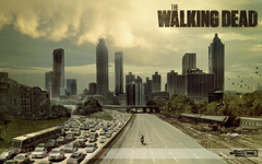 Wallpapers Hd The Walking Dead Backgrounds 1 HD Wallpapers