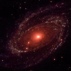 Universes Evolve Inside Black Holes