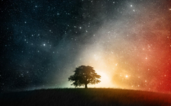 Cosmos HD Wallpapers