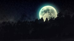 full moon beyond the pines wallpapers