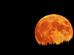 Image For Total Lunar Eclipse Wallpapers