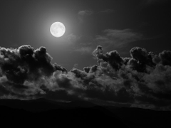 The Daily Poet The Gibbous Moon