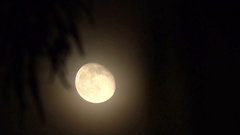 HD tight waning gibbous moon super detail v2 Stock Video Footage