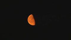 Orange waning gibbous moon against a black night sky Stock Video