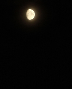 Waxing Gibbous Moon and Jupiter