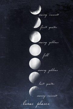 complete moon cycle