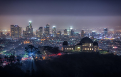 Wallpapers the sky trees night lights home california the dome