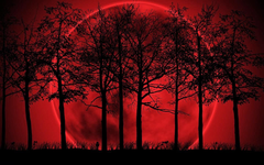 Red Moon wallpapers for android smart phones Urpouch