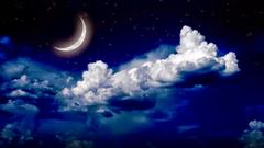 moon stars notebook