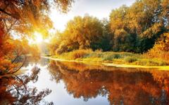 Autumn Trees Lake Bright Sun wallpapers