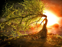 SoulShine s Summer Solstice Wild Woman Retreat Soul Shine