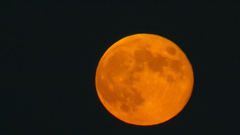 New Year Starts With A Super Blue Moon A Blood Moon And A Black