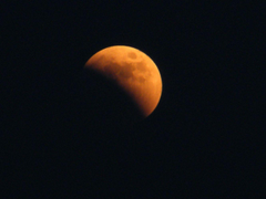 What Is a Lunar Eclipse When and Why Blood Moons Occur