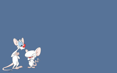 Best 57 Pinky and the Brain Wallpapers on HipWallpapers
