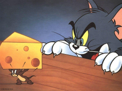 Wallpaper s Collection Tom and Jerry Wallpapers