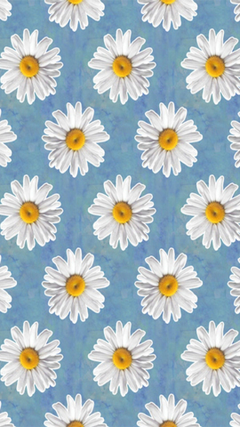 Daisy Backgrounds posted by Ethan cutewallpapers
