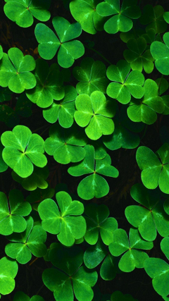 Cellphone Backgrounds Wallpapers for St PATRICK S DAY