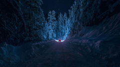 Driving Through The Snowy Forest HD Aesthetic Wallpapers