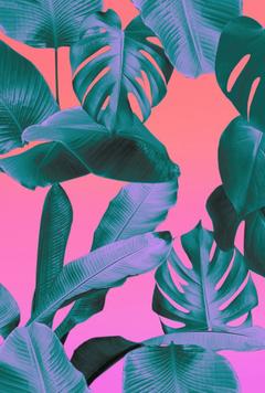 Summer Aesthetic Wallpapers pixelstalk