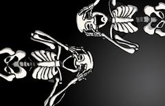 Skeleton Aesthetics Laptop Wallpapers line 17qq