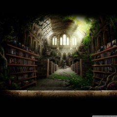 Library Wallpapers 4K