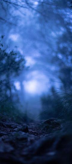 Grass Blur Macro