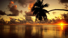 Beach Wallpapers Examples To Put On Your Desktop Backgrounds