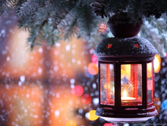 Snow Christmas Tree Window Wallpapers And Image Wallpapers