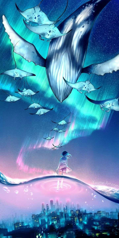 Drawn Whale sky wallpapers 14