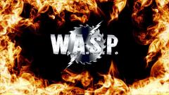 WASP heavy metal