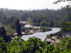 Congo River and nature wallpapers